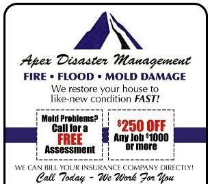 Water Damage and Mold Coupon